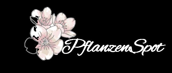 PflanzenSpot